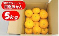 ※受付終了※【数量限定】健やかジューシー・甘夏みかん<約5kg>