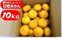 ※受付終了※【数量限定】健やかジューシー・甘夏みかん<約10kg>