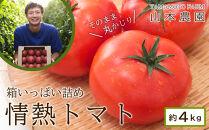 箱いっぱい詰め!情熱トマト約4kg【山本農園】