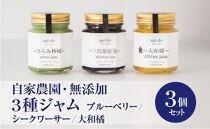 agrido無添加ジャム3個入り 三島紫紅果(みしまぶるーべりー)・ひらみ檸檬・大和橘