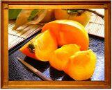 <2021年発送>【県認定エコファーマー】採れたてタネなし柿 3Lサイズ(刀根早生)7.5kg