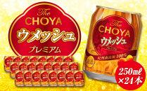 TheCHOYAウメッシュ250ml×1ケース(24本)