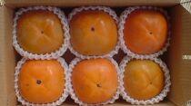 ★10月発送★【柿とリンゴを掛け合わせたような絶品の味】太秋柿(たいしゅうがき)(約2キロ)