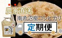 令和2年度米〈頒布会〉玄米10kg(5kg×2袋)×3回農家直送・南魚沼産コシヒカリ_AG
