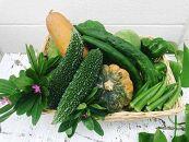 【夏限定!】沖縄の夏野菜詰合せ