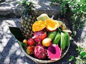 【夏限定!】沖縄の夏のフルーツ詰合せ