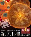 和歌山県産紀ノ川柿約4kg