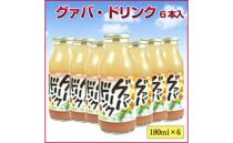 グァバジュース180ml6本入り(高知県黒潮町産)ジョブなしろ