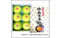高知県産 水晶文旦 3kg/6玉入【贈答用】