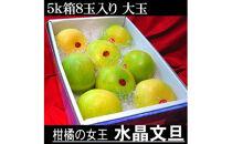 南国土佐の女王柑橘水晶文旦 5kg8玉入り 大玉サイズ