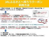 室戸市JALふるさとクーポン147000&ふるさと納税宿泊クーポン3000