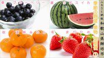 御坊市 旬の野菜・果物定期便(春・夏・秋・冬)4回 ①