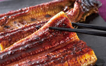 【鹿児島産】地下水で育てた絶品鰻うなぎ蒲焼150g以上×2尾