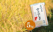 【令和2年産】宮城県栗原産特別栽培米「ササニシキ」白米5kg