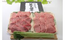 【AB126-NT】長崎和牛モモ焼肉用500g