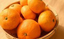 紀州有田みかんご家庭用5kg(S~Lサイズおまかせ)