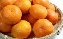 ※受付終了※紀州有田産早生みかんの樹上熟成みかん5kg(サイズ混合)