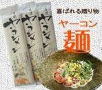 【もちもち食感】ヤーコン麺