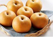 【2020年8月中旬以降発送】和歌山県産旬の樹上完熟梨4kg
