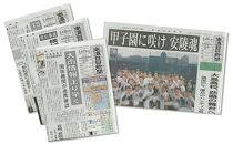 【定期購読】南海日日新聞(6ヵ月間購読/毎日発送)※休刊日付・年末年始除く。