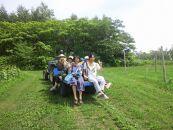 【余市の自然と果物を体感】農作業体験+ワイナリー巡りコース ペア利用権利