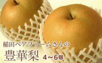 A092稲田ペアファームの豊華梨【45pt】