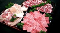 都城産宮崎牛「Mの国黒豚」・都城産「宮崎地頭鶏」焼肉セット