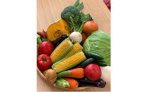 川崎市市内産新鮮野菜・農産物詰め合わせ
