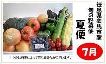 <お届けは7月より>旬の野菜便(夏便/2021年)