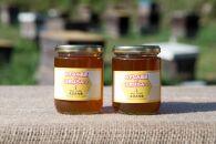 みずなみ高原で採れた天然無添加非加熱の熟成ハチミツ(そよごハチミツ) 300g×2