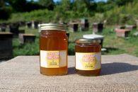 みずなみ高原で採れた天然無添加非加熱の熟成ハチミツ(そよごハチミツ) 300g×1、500g×1