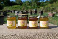 みずなみ高原で採れた天然無添加非加熱の熟成ハチミツ(山桜300g×1 アカシア300g×1 ソヨゴ300g×2)