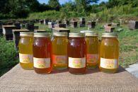 みずなみ高原で採れた天然無添加非加熱の熟成ハチミツ(山桜1kg×2 アカシア1kg×2 ソヨゴ1kg×2)