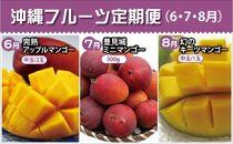 【2021年発送】沖縄フルーツ定期便(6・7・8月コース)