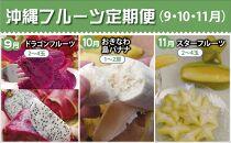 【2021年発送】沖縄フルーツ定期便(9・10・11月コース)