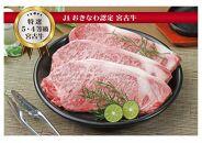 宮古島産黒毛和牛 特選5等級・4等級サーロインステーキ(200g×6枚)