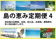 島の恵み定期便(年4回)