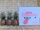 ★早期受付★宮古島産ピーチパイン3個セット