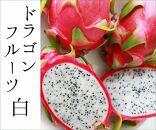 無農薬 ドラゴンフルーツ(白)2kg
