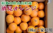 【訳あり・ご家庭用】和歌山由良町産の濃厚清見オレンジ約10kg