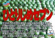 ※受付終了※ 紅こだま西瓜(ひとりじめセブン)2L×2玉