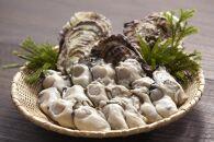 プレミアムトップかき 森脇水産生牡蠣殻付き(加熱用)20ヶ