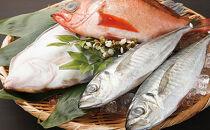 四季の旬の地魚の詰め合わせ【B】