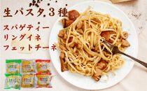 讃岐麺職人が作った生パスタアラカルト3種(スパゲティー、リングイネ、フエットチーネ)24食入(麺のみ)