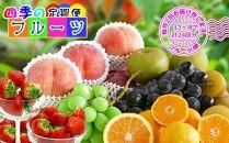 【定期便24回】創業100年産直あきんど四季のフルーツの定期便《月2回×12ヶ月連続でお届け》