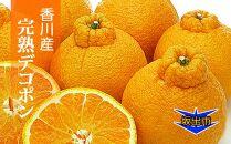 香川のあま~いデコポン[不知火]3kgの詰め合わせ
