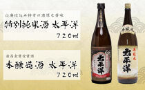 太平洋2本セット【山廃仕込み特別純米酒と本醸造酒】