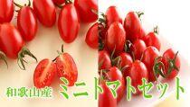 ミニトマトセット「キャロルセブン&アイコ」2kg【和歌山産】