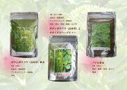 【無農薬栽培】「バジリコ粉末」「ボタンボウフウ(長命草)粉末」「ボタンボウフウと大崖石榴茶(長命草とオオイタビハーブティー)」3袋セット