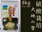 あきたこまち「特別栽培米 大地の響8kg」秋山商店